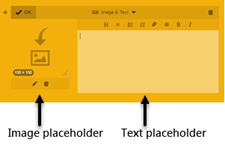 Image and Text module