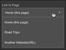 Link to a selected page