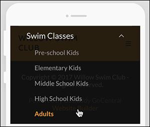 Mobile preview of drop-down menu