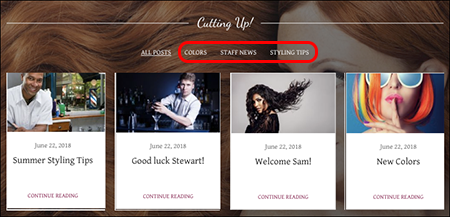 Original blog displays newly selected categories
