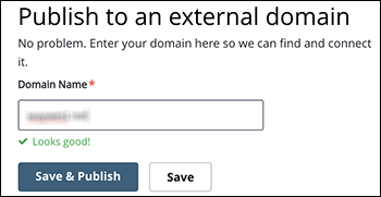 enter external domain name