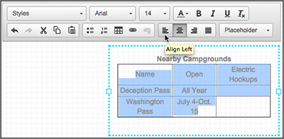 Click the appropriate button within the text box editor to change your selection.